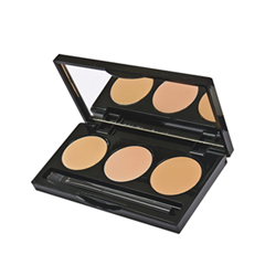 Консилер Senna Cosmetics HD Hydra-Cover Concealer (Цвет 01 Fair to Light/Medium variant_hex_name DAA56F)