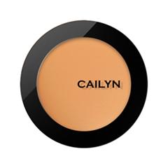 Тональная основа Cailyn