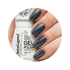 Гель-лак для ногтей Dance Legend Gel Polish Evening Time 06 (Цвет 06 World So Cold variant_hex_name 2D333F)
