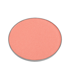 Румяна Chantecaille Cheek Shade Refill Fun (Цвет Fun variant_hex_name F69988) румяна chantecaille cheek shade refill fun цвет fun variant hex name f69988