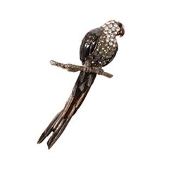 Броши Herald Percy Брошь-попугай черного цвета брошь бижутерия в спб