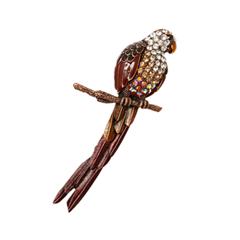 Броши Herald Percy Брошь-попугай коричневого цвета куплю попугая жако недорого в екатеринбурге