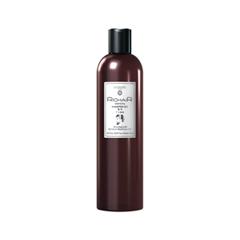 RicHair Men's Pro Shampoo and Gel 2in1 (Объем 400 мл)