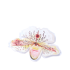 Фото Броши Hi!Hi! Goodbye! Брошь Орхидея