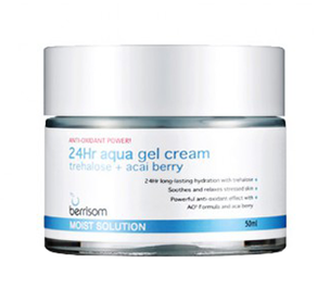 Эмульсия - Moist Solution 24Hr Aqua Gel Cream