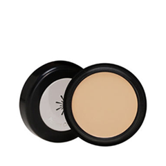 Консилер - The Style Perfect Concealer 21