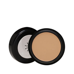 Консилер - The Style Perfect Concealer